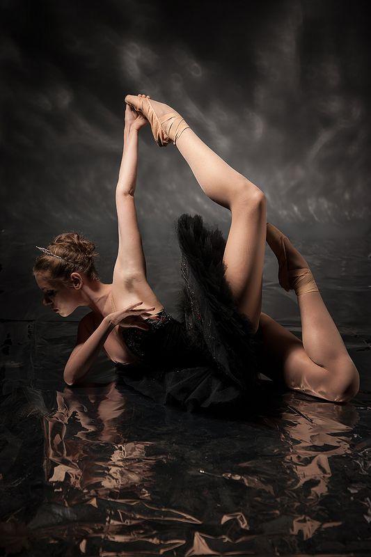 art, балет, танец, фигура, классика, фотостудия, постановка, концепт, идея, режиссура, художественная, поэзия, искусство, современный, балерина, тело, пластический, линии, светопись, рисунок, fine art, beauty, davydov, art projekt, art work, concept Сфинкс...photo preview