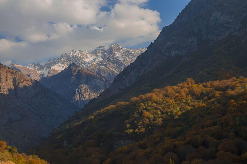Осень в Испаеphoto preview