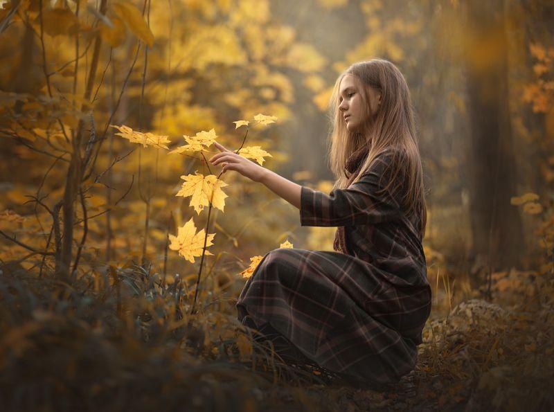 осень, лес, желтые листья ***photo preview