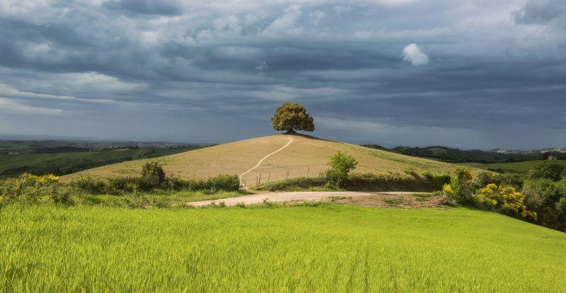 italy, tuscany, италия photo preview