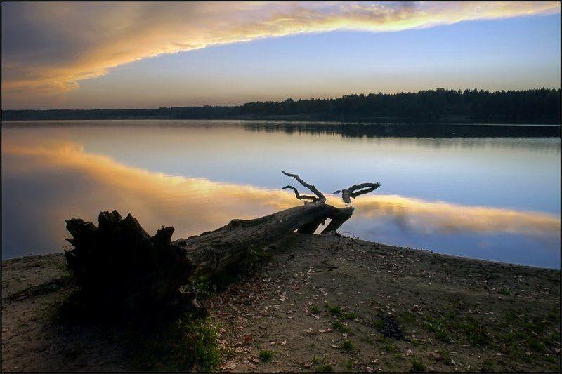 бисерово, озеро, закат, золото, дерево Небесное золотоphoto preview