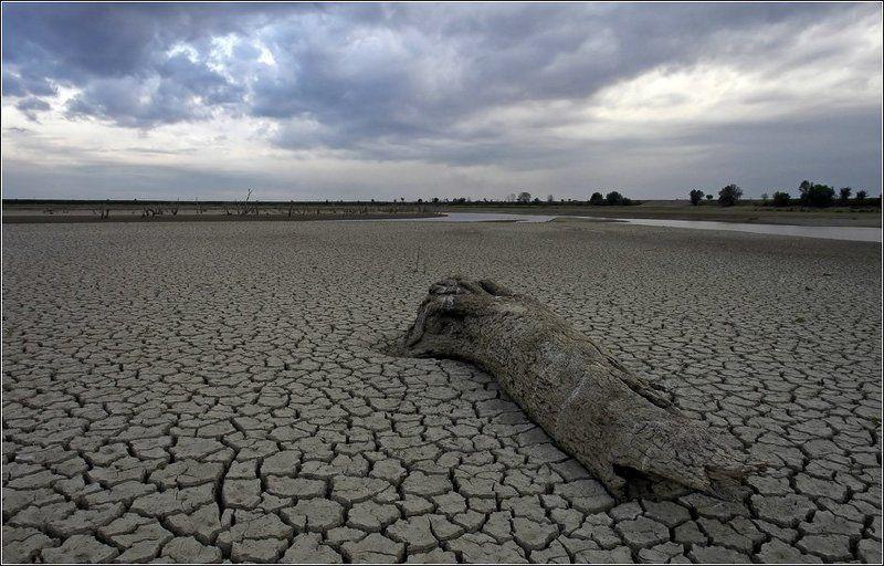 река, псекупс, засуха, дождь В ожидании дождяphoto preview