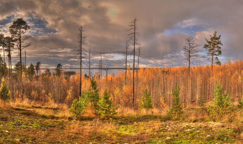 Осень в Выборгеphoto preview