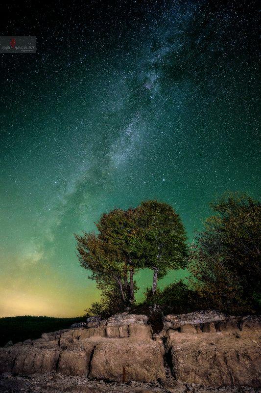 Грузия, Млечныйпуть, Астрофотография, Дерево, Звезды, Осень Milkyway in Rachaphoto preview