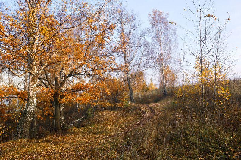 клязьма глубоково октябрь Октябрь. Глубоковоphoto preview