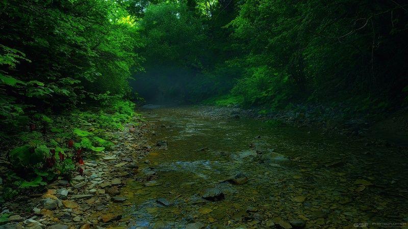 лес лето река горы природа пейзаж В предрассветном сумракеphoto preview