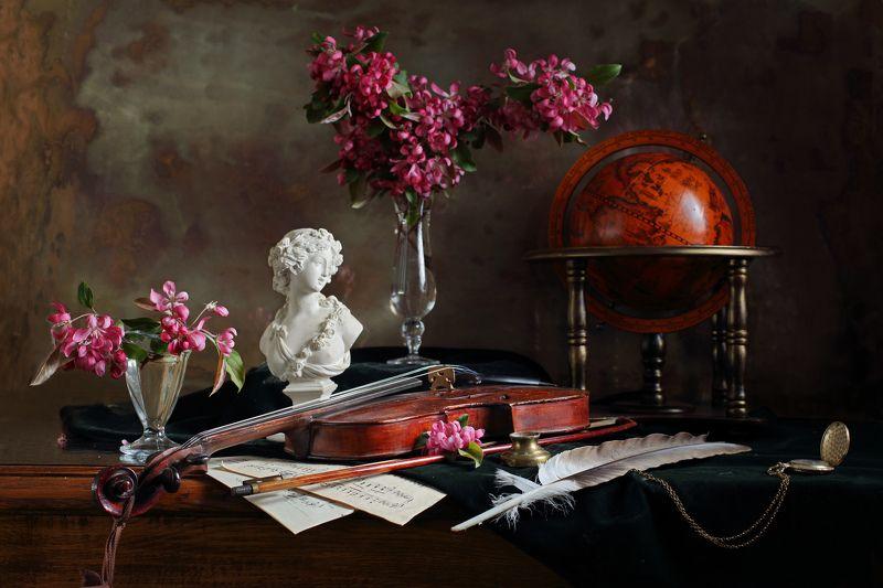 скрипка, музыка, цветы, свет, бюст, искусство Натюрморт со скрипкой и цветамиphoto preview