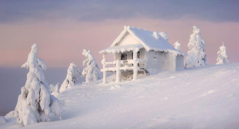 лапландия,финляндия, леви, полярная ночь,lapland Сказки Лапландииphoto preview
