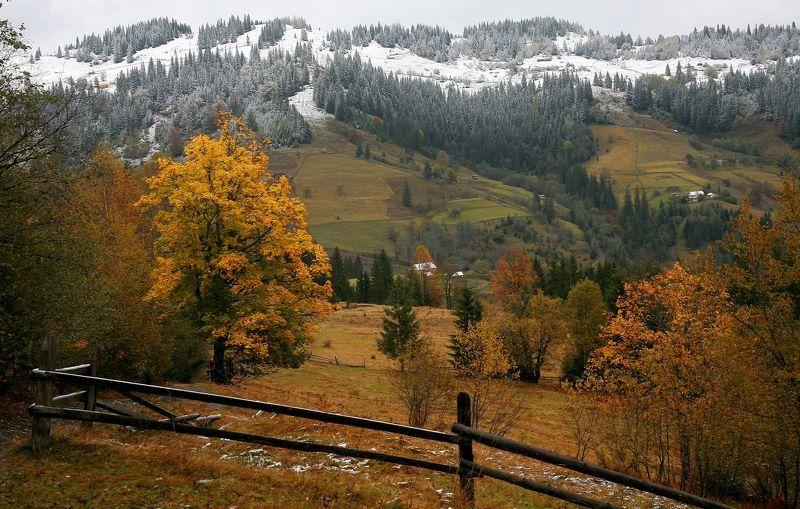 Зима уже не за горамиphoto preview