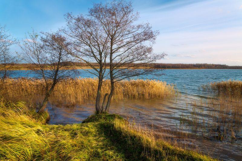 Ноябрь на озере Череяphoto preview