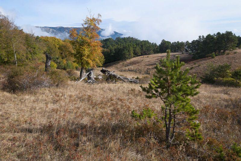 Любимые места..... Осень.....photo preview