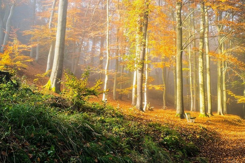 чехия карловы вары Осень в Карловых Варах фото превью