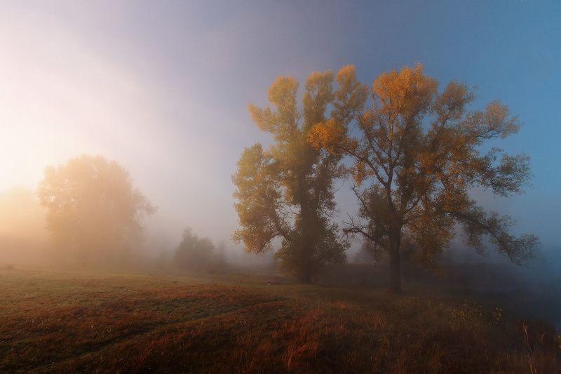 Утро купалось в осеннем тумане.photo preview