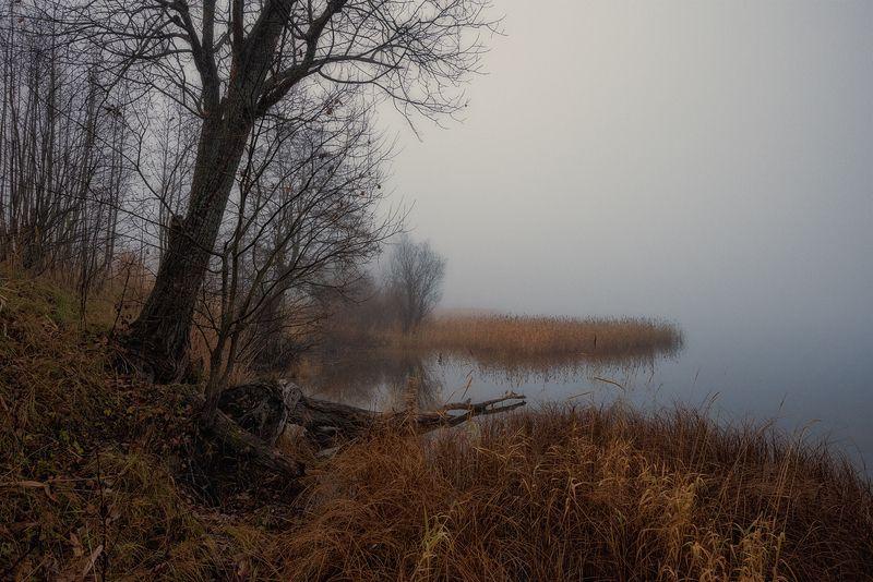 утро,осень,туман,река,пейзаж В тихой заводи бродит туман...photo preview