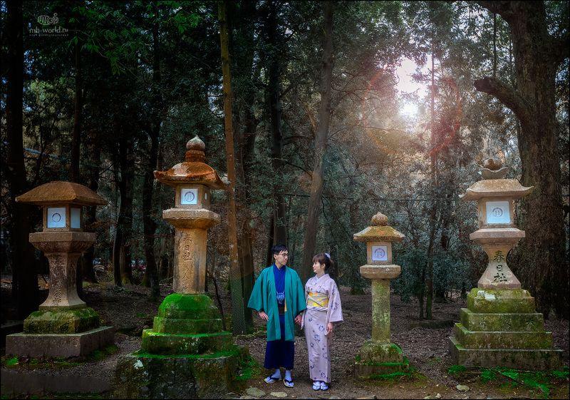 Япония, Нара, сакура, жанр, люди,  В сказочном паркеphoto preview