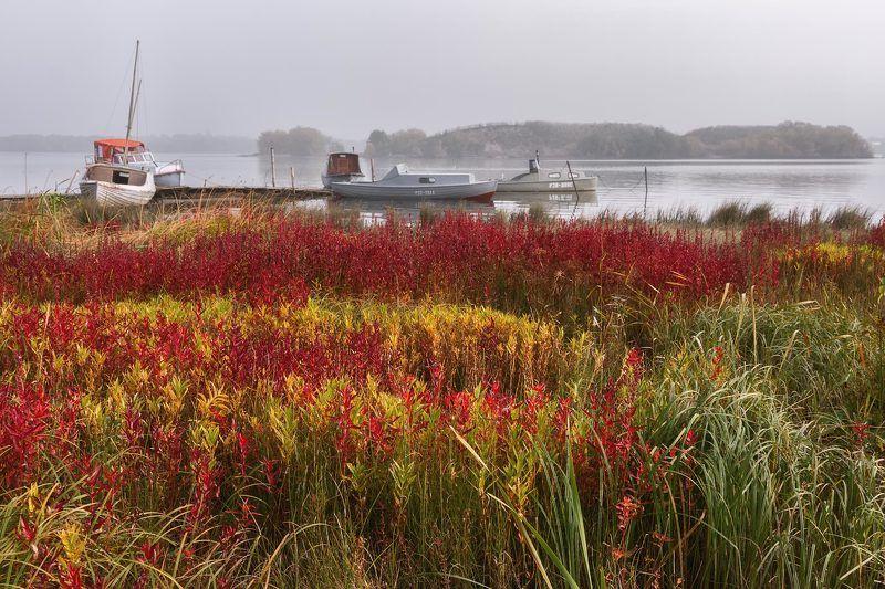 осень туман река кузнечиха берег трава катера мостки соломбала архангельск Осень в Соломбалеphoto preview