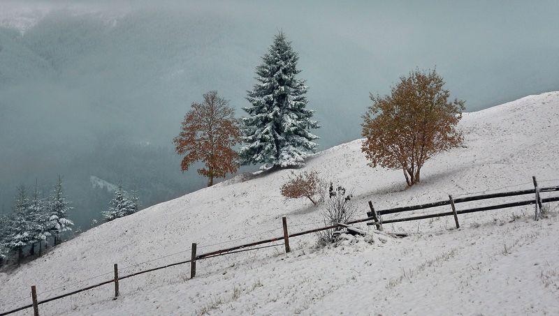 Осенне -зимняяphoto preview