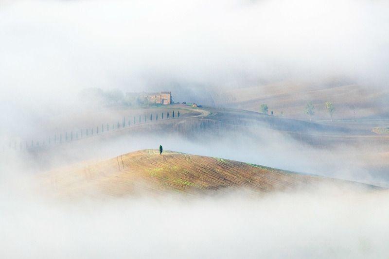 тоскана, италия, italy,tuscany, туманы тосканы, landscapesfog, valdorcia, toscana, landscapesoftuscany, fog Когда рисует туман. Тосканаphoto preview