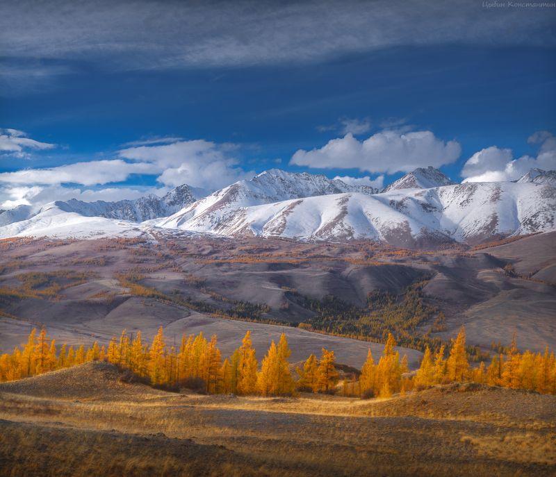алтай, курай, курайский хребет, чуя, чуйский тракт, горы, осень Осенний Алтайphoto preview