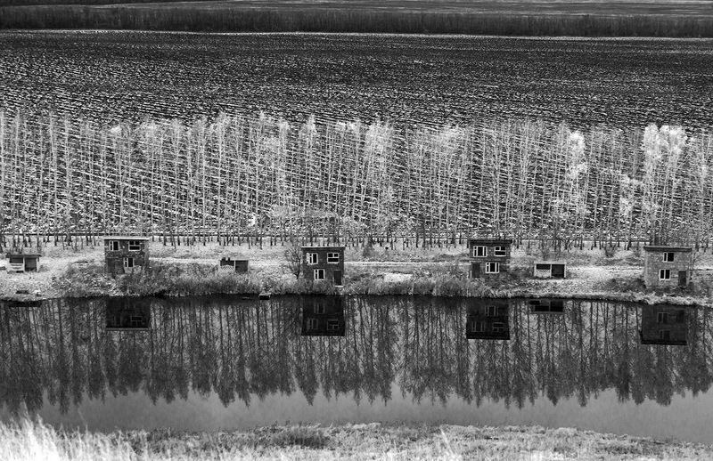 осень, отражение, озеро Отражение...photo preview