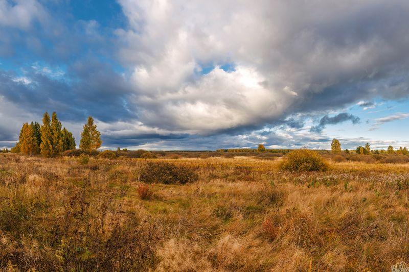 моршанск,моршанский район,тамбовщина,тамбовская область,мутасьево Мутасьевские поля.photo preview
