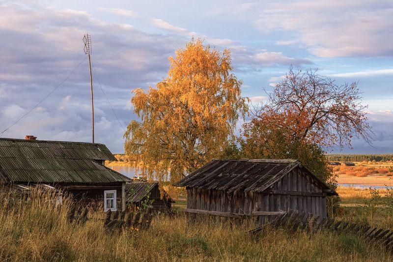 осень, сентябрь, деревня, дом, старый, деревья, береза, желтая, трава, река Деревенская осеньphoto preview