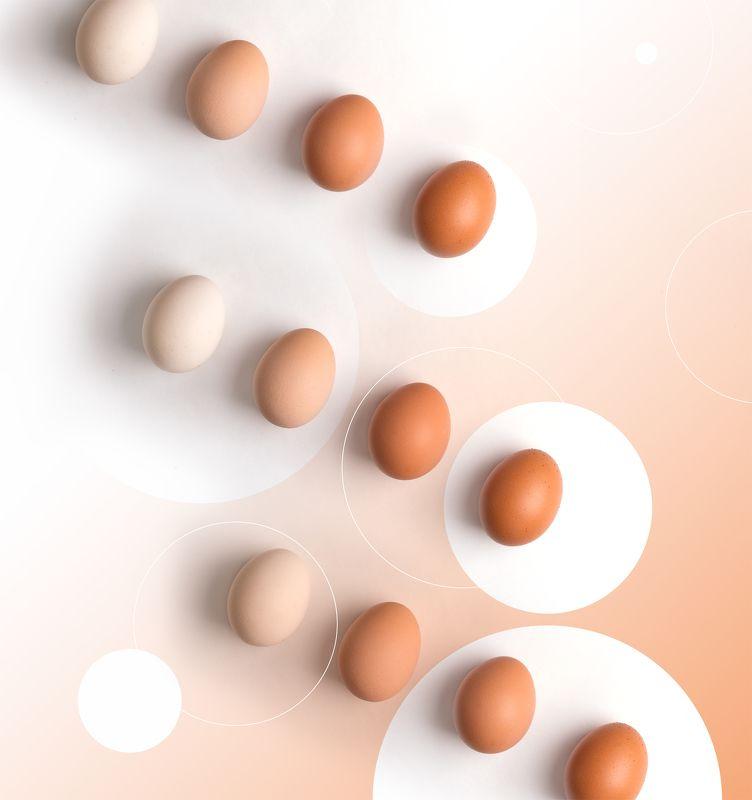 яйцо, яйца, тональность, оттенки, вид сверху, натюрморт, креативный, концепт shades of eggsphoto preview