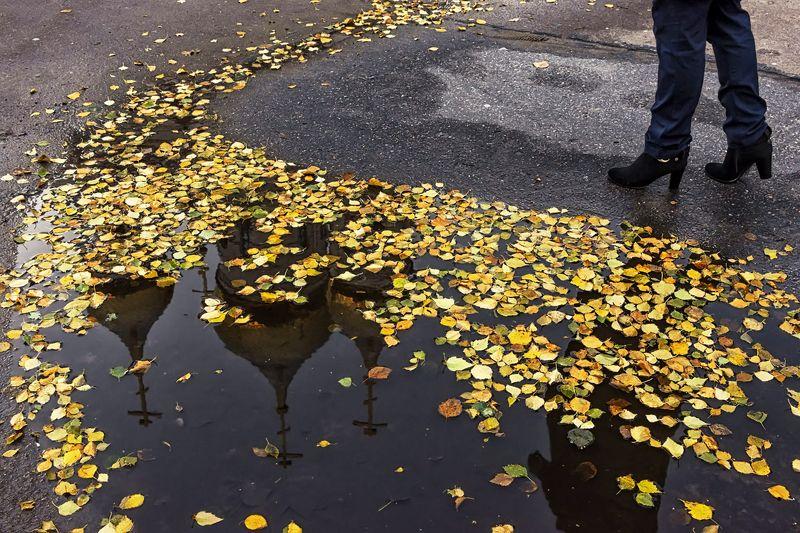 осень город лужа отражения листья желтые асфальт ноги Не спеша ступая в осеньphoto preview