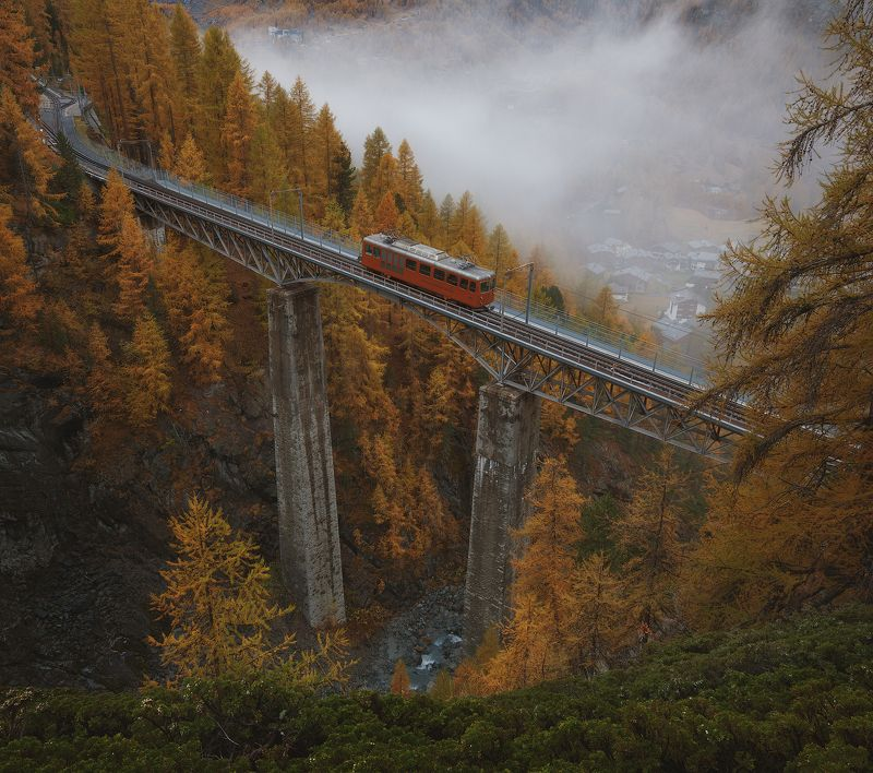 Осенний экспрессphoto preview