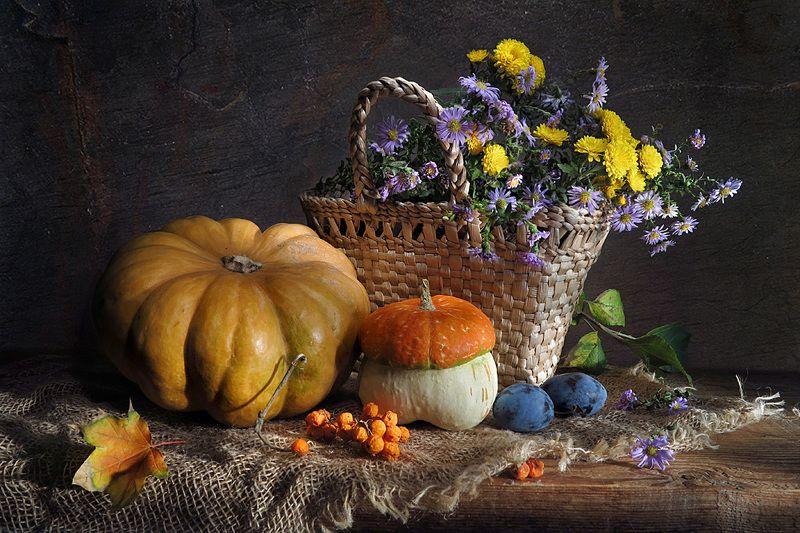 цветы,тыква,мешковина,сливы,рябина Осеннийphoto preview