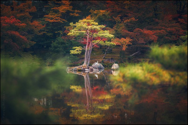 Осень в Киотоphoto preview