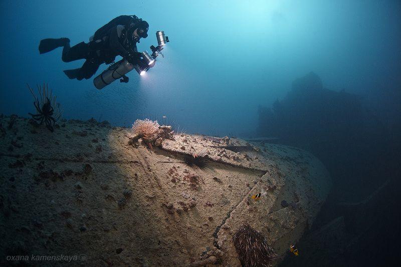wreck SS Rosalie Moller. SS Rosalie Moller. Дымовая труба.photo preview