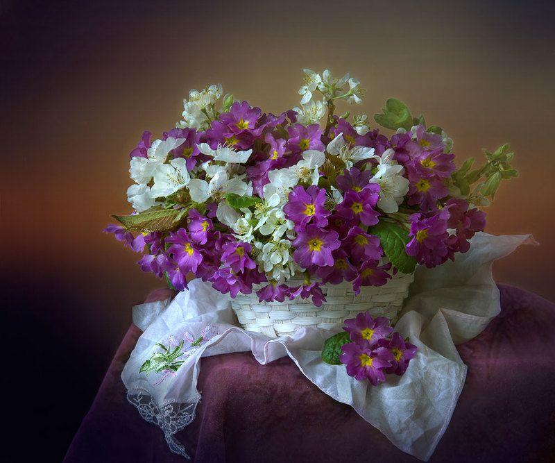 красивый натюрморт с примулами,весенние цветы,букет,художественное фото,искусство,творчество. Нежный аромат весны.photo preview
