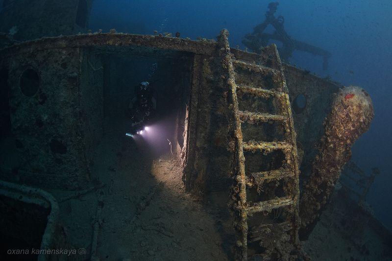 wreck SS Rosalie Moller. SS Rosalie Moller. Палуба.photo preview