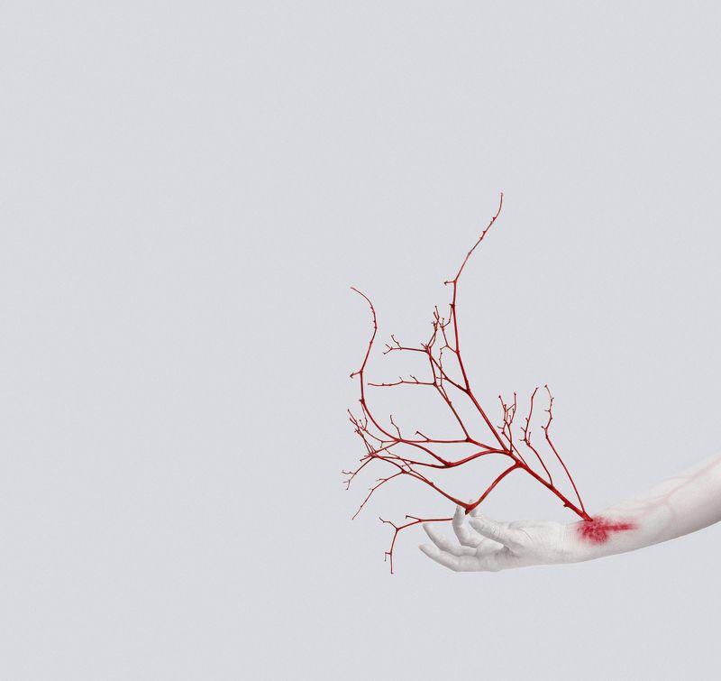 вены, рука, дерево, аллегория, креатив, VEINSphoto preview