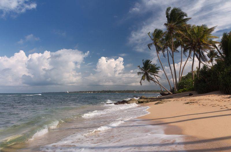 Пляж песок океан пальмы облака Шри Ланка Букет пальмphoto preview