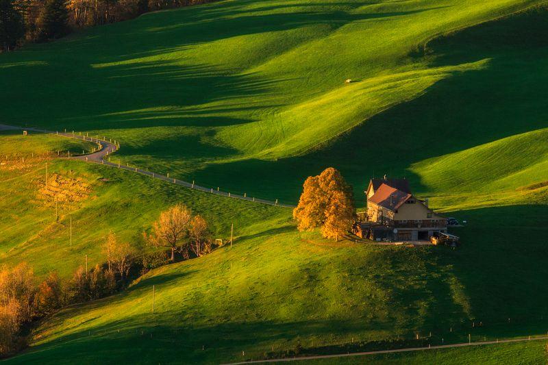 швейцария, поля, вечер, осень Дом на зеленых волнахphoto preview