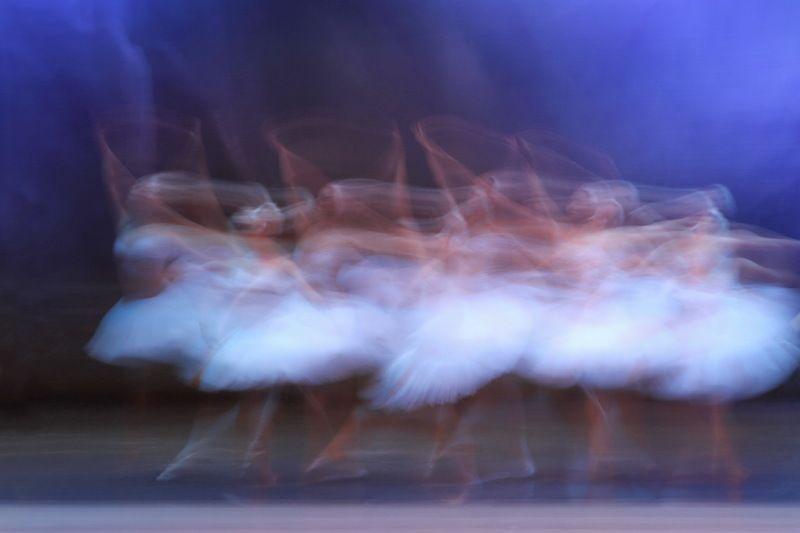 Танец лебедейphoto preview