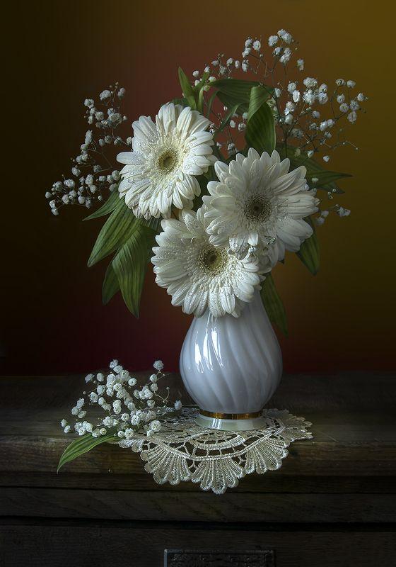 красивый натюрморт с белыми герберами,цветы,букет,художественное фото,искусство,творчество,костюченко людмила. Белые герберы.photo preview