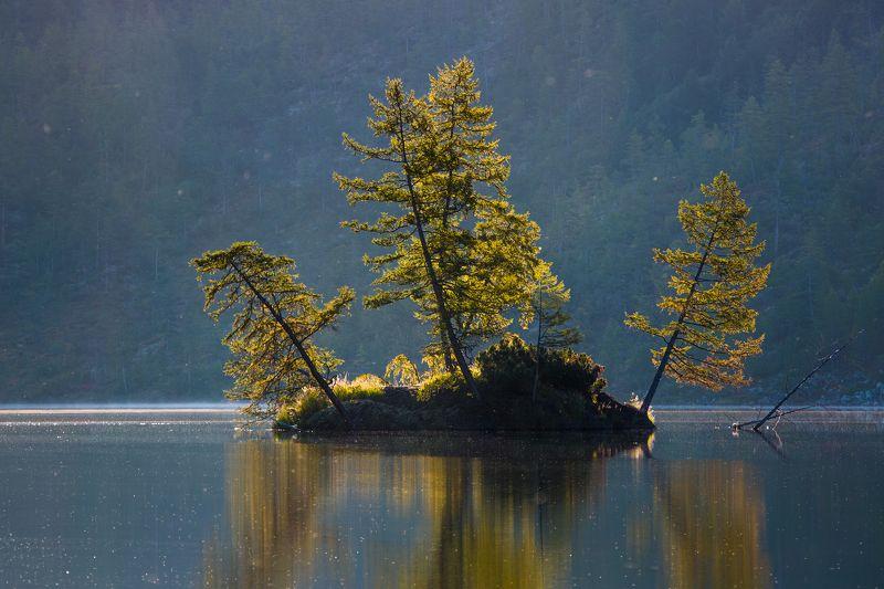 остров, озеро, утро, рассвет, отражение, деревья, колыма, дальний восток, антон селезнев, путешествие Островок в контровом светеphoto preview