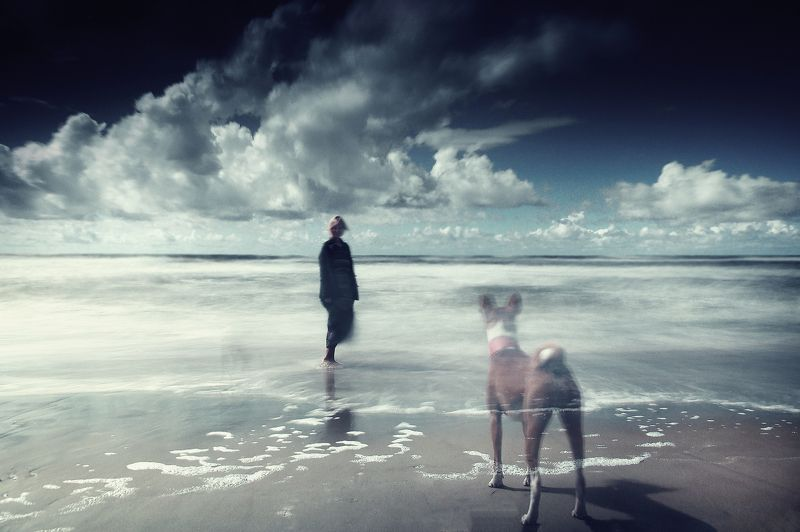 Lithuania, sea, water, beach, sand, dog, clouds *photo preview