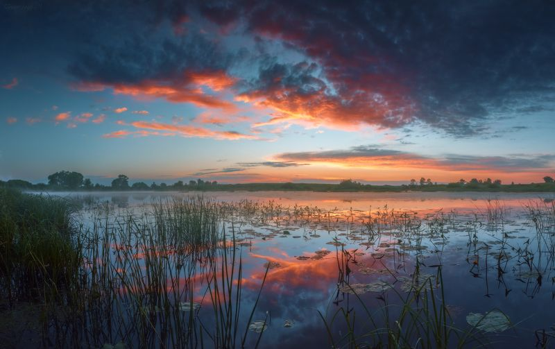 рассвет, небо, лето, река, тырница, рязанская область Летняя акварельphoto preview