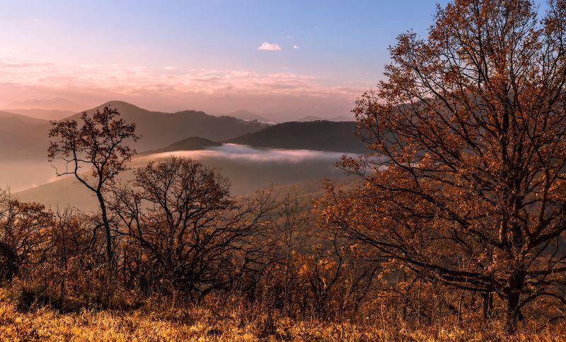 Осень и тихое утро...photo preview