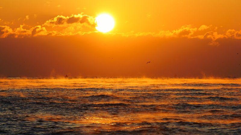 south korea,ulsan,sunrise,winter,sea,seascape,water fog,sun,horizontal,sunlight,clouds,waves Sunrisephoto preview