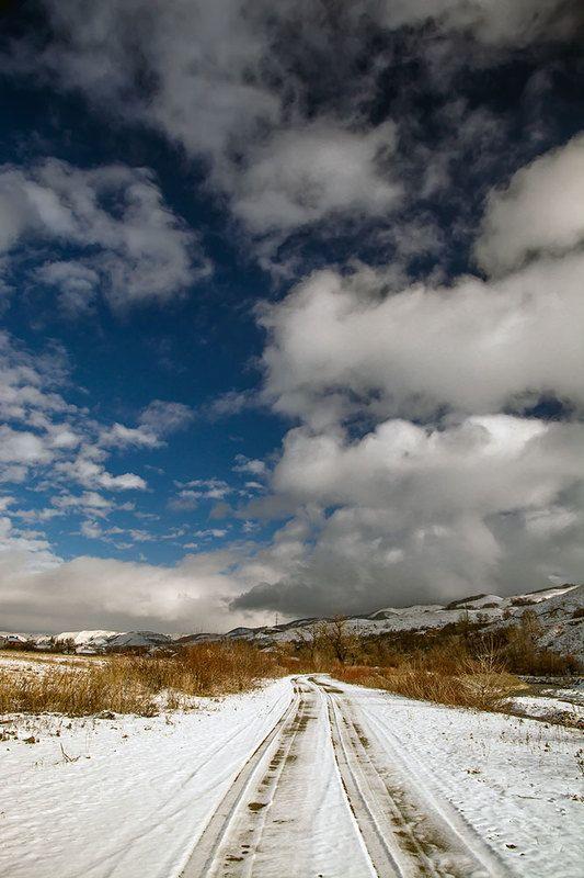 красивый пейзаж,северный кавказ, кисловодск,костюченко людмила. Белоснежные лошадки.photo preview