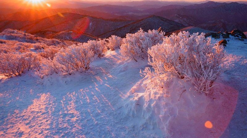 south korea,sunrise,winter,mountain,snow, rime ice, sun,sunlight,trees,landscape Happy New Year 2018photo preview