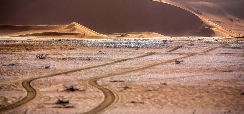 Нетрадиционный взгляд на пустыню...photo preview