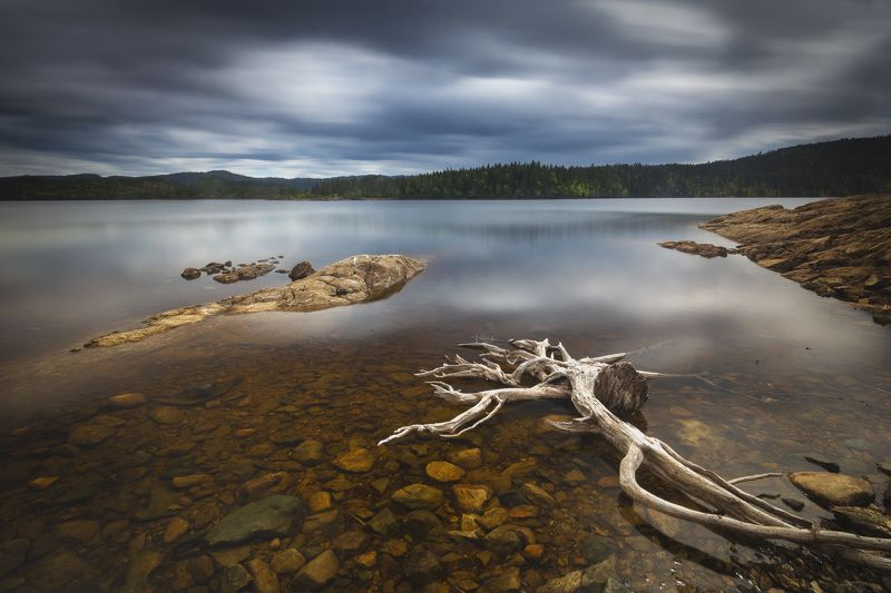 lake, landscape, lakeside, long exposure, norway, norwegian, drift wood, shore, water, reflections, light, nature, outdoor, Dead naturephoto preview