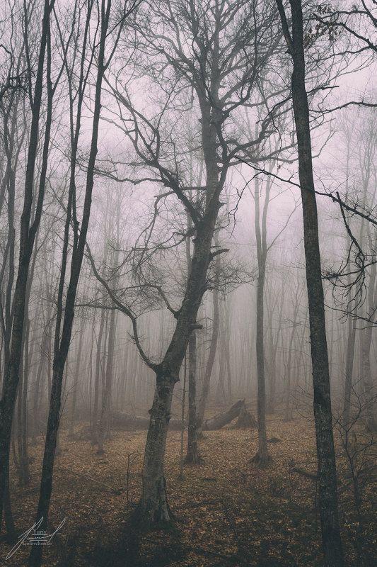 Урочище Уна-Коз.photo preview