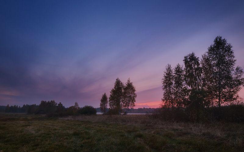 россия, подмосковье, осень, вечер, закат, небо, облака, свет, поле, деревья, трава После закатаphoto preview